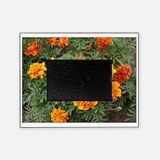 Orange Delight Picture Frame