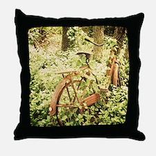 Ole Rusty Throw Pillow