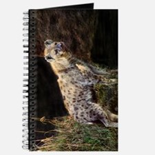 Spotted Hyena Journal