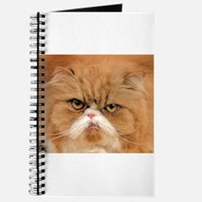 The Maxwell Cat Journal