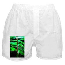 A New Perspective on a Green Leaf Boxer Shorts