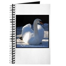 Mute Swan Winter Journal