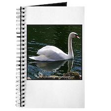 Mute Swan Summer Journal