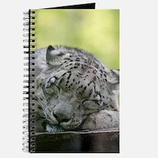 Funny Big cat Journal