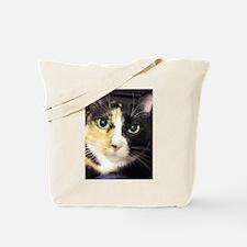 Calico Cuddles Tote Bag
