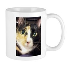 Calico Cuddles Mugs