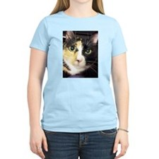 Calico Cuddles T-Shirt