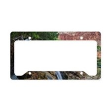 Fifty Foot Falls License Plate Holder