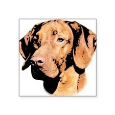 "Vizsla Hungarian Pointer Square Sticker 3"" x 3"""