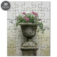 The Plant at Lyme Park Puzzle