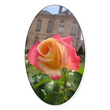 A Paris Rose Decal