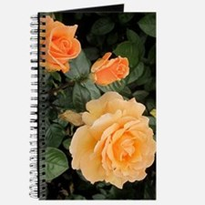 Orange Roses Journal