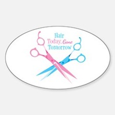 Hair Today Gone Tomorrow Decal