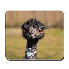 Portrait of an Emu Mousepad