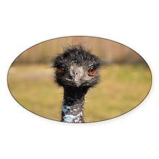 Portrait of an Emu Decal