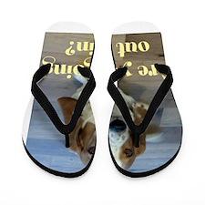 Angry Dog Flip Flops