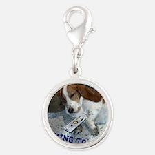 Lazy Dog Silver Round Charm
