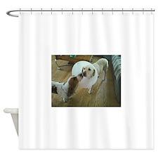 Sick Dog Shower Curtain