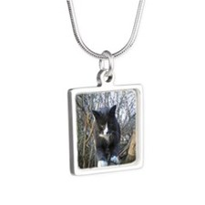Cats Rule Silver Square Necklace