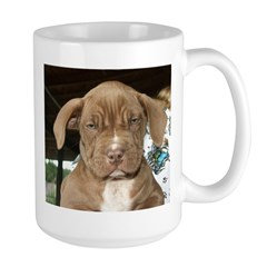8wksfacegood.jpg Mugs