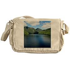 Cool Alaska cruise Messenger Bag