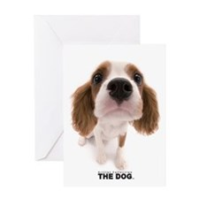 Cavalier Kind Charles Spaniel Greeting Cards