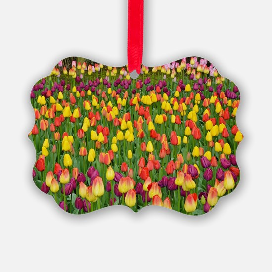 Colorful spring tulips garden Ornament