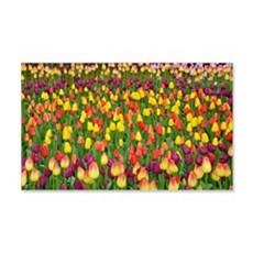 Colorful spring tulips garden Wall Decal