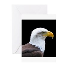 Bald Eagle profile Greeting Cards