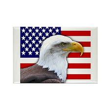 USA flag bald eagle Magnets