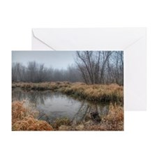 Misty Morning At The Lake Of The Oza Greeting Card