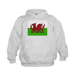 Red Welsh Dragon Kids Hoodie