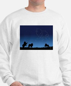 Stars in the Sky Sweatshirt