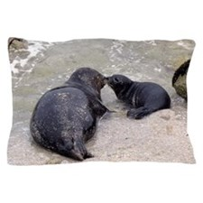 Harbor Seal Mom Kisses Pup Pillow Case