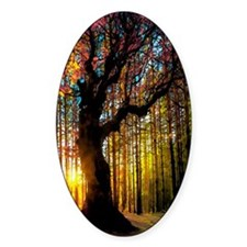 colorful trees 001 Decal