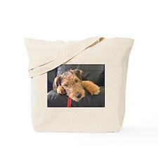 Sleepy Airedale Earnest Tote Bag