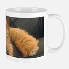 Sleepy Airedale Earnest Mugs