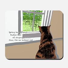 Indoor cat Mousepad