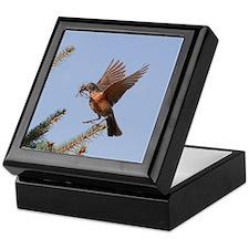 Nesting Robin Keepsake Box
