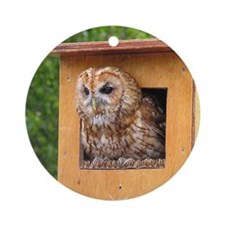 Brown Owl Ornament (Round)