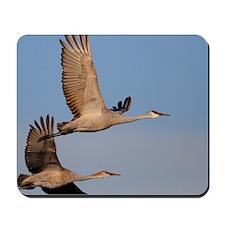 cranes in flight Mousepad