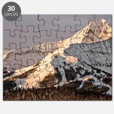 The Lonely Mountain Puzzle