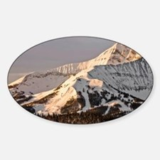 The Lonely Mountain Decal