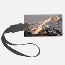 The Lonely Mountain Luggage Tag