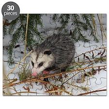 Snow Possum Puzzle