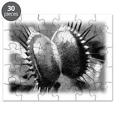 Venus Flytrap Puzzle