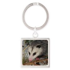 Snow Possum Keychains