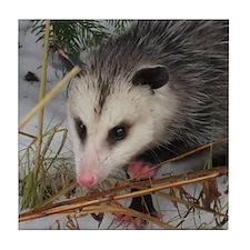 Snow Possum Tile Coaster