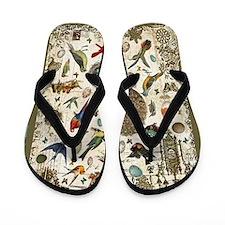 Spring Fling Flip Flops
