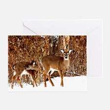 Deer - Doe and Fawn Greeting Card